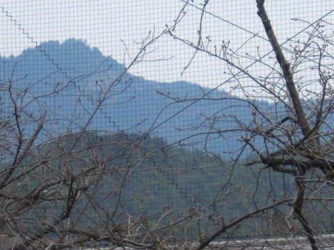 1・嵐山・あたご山1.JPG