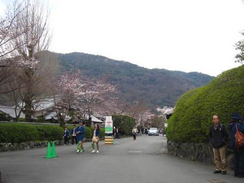 1・嵐山天龍寺・2.JPG