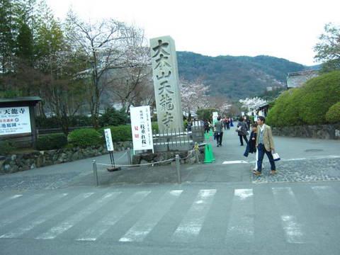 1・嵐山天龍寺・4.JPG