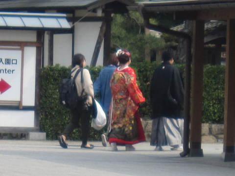 2・栗林公園の花嫁.JPG