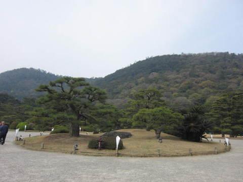 2・栗林公園松1.JPG