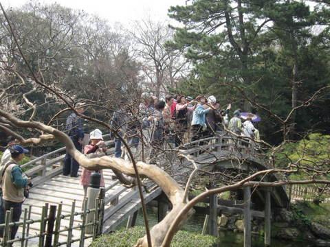 2・栗林公園池と橋3.JPG