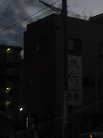 317.JPG