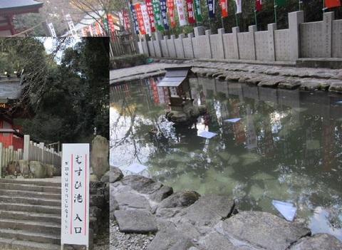 7大縣神社むすひの池.JPG