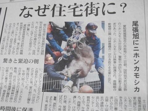 カモシカニュース・1.JPG