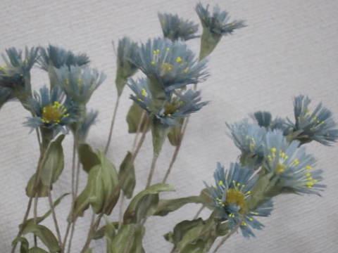 ローダンゼの花・1.JPG
