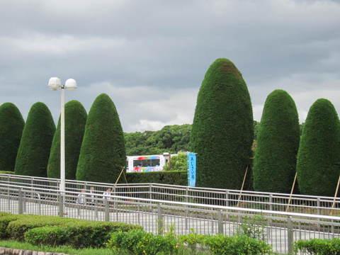 万博公園.JPG