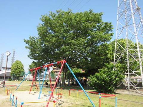 公園掃除.JPG