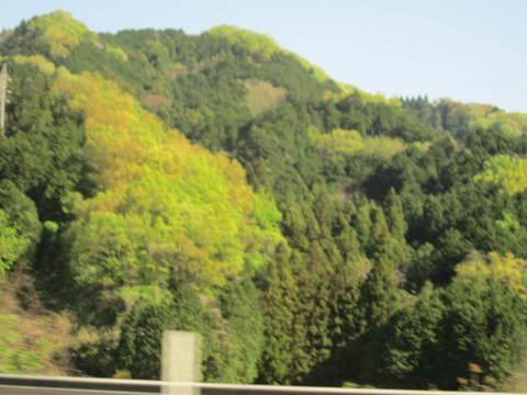 名阪の山・3.JPG