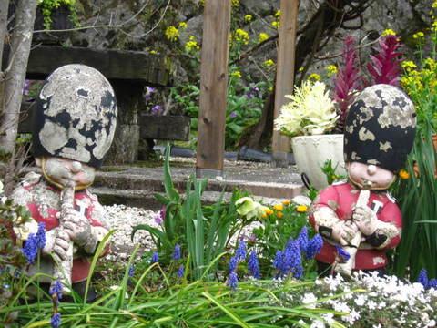 旭の花壇.JPG