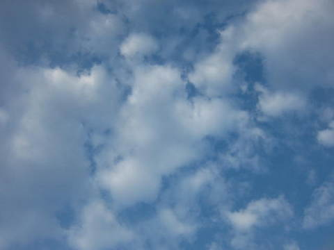 朝の雲.JPG
