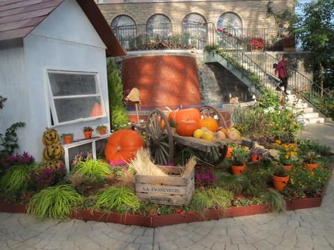温室・かぼちゃ.JPG