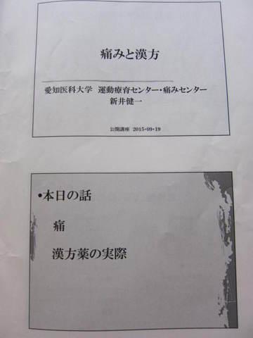 痛みと漢方・1.JPG