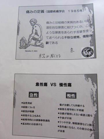 痛みと漢方・2.JPG