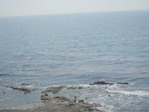 知多海・3.JPG