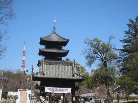 興正寺・山門と塔.JPG