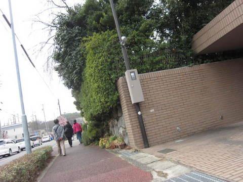 街道・3.JPG