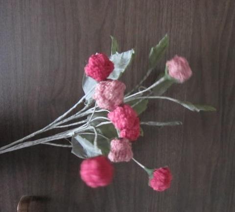 野イチゴ・1.JPG