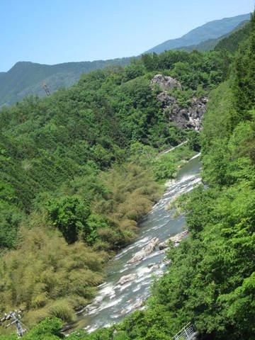 銀の森・川3.JPG