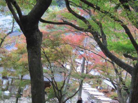 香積寺から紅葉2.JPG