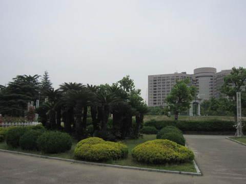 鶴舞公園・2.JPG