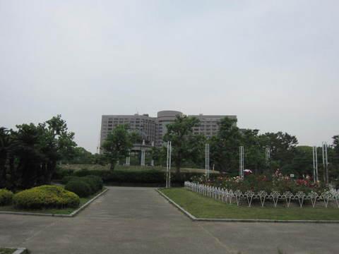 鶴舞公園・3.JPG