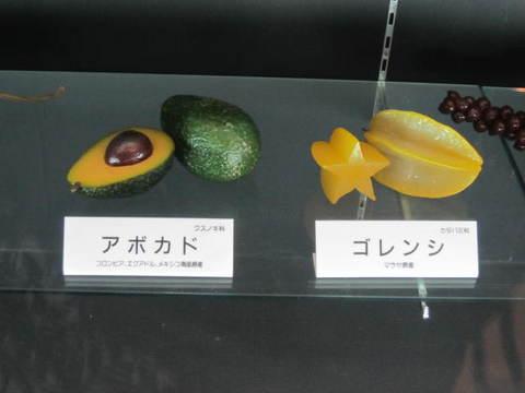 1・アボガド・ゴレンシ.JPG