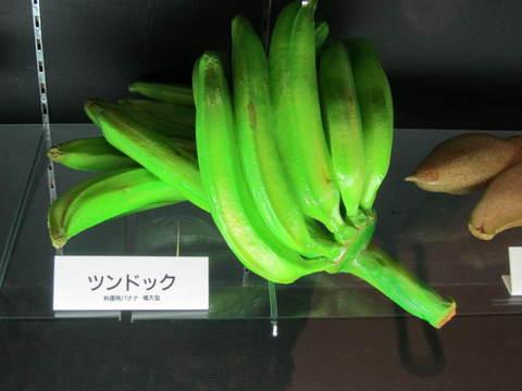 1・バナナ・ツンドック.JPG