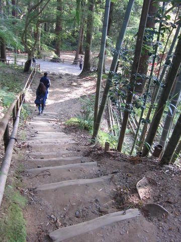 1・中尊寺土の段.JPG