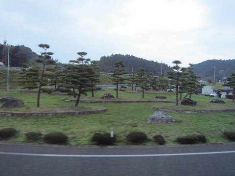 1・松島インターの松.JPG