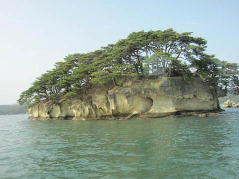 1・松島松の島5こもね島.JPG