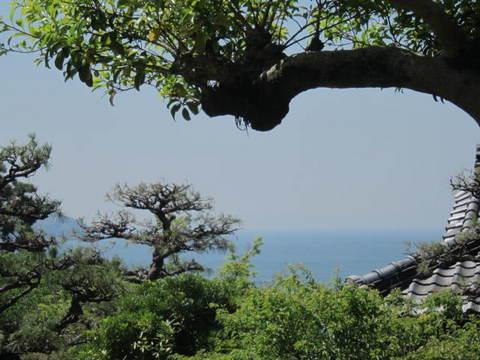 1・竹島海.JPG