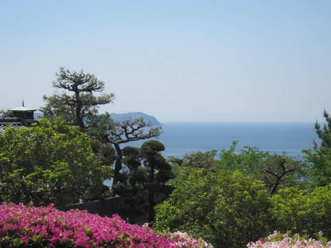 1・竹島海4.JPG