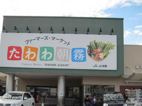 2・たわわ朝霧.JPG