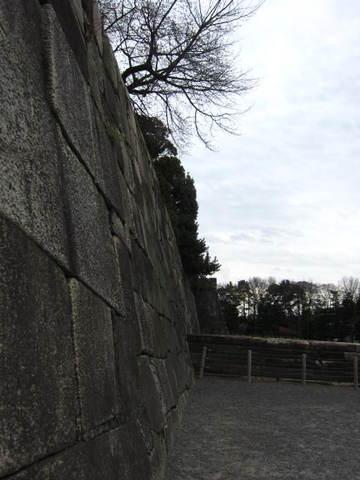2・国・天守閣跡石段2.JPG