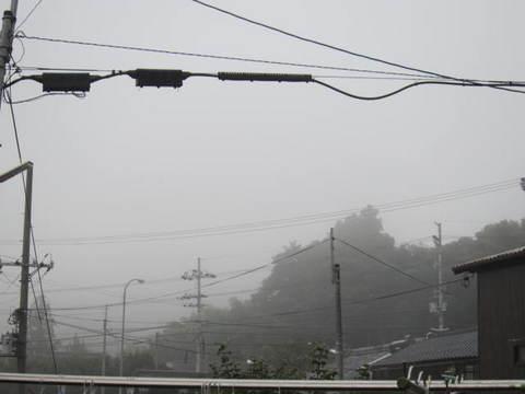 2・朝霧3.JPG