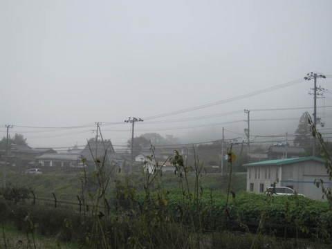 2・朝霧4.JPG