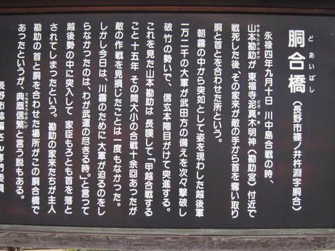 2・胴合橋1.JPG