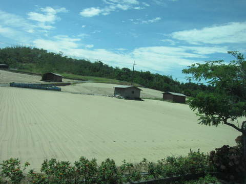2・4鳥取砂丘に畑.JPG