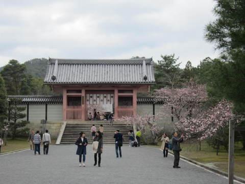 3・仁和寺赤い門.JPG