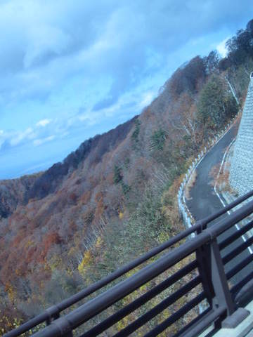 3・八甲田山山道.JPG