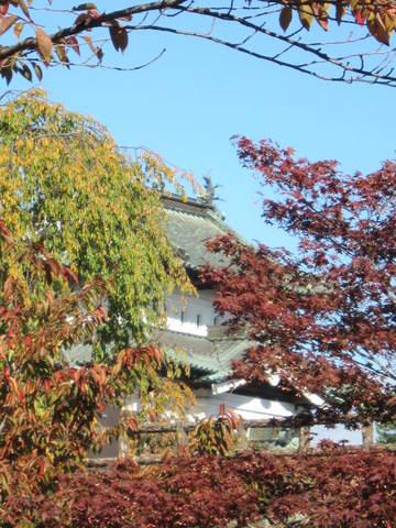 3・弘前城3.JPG