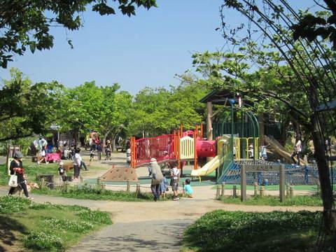 3・浜名湖公園1.JPG