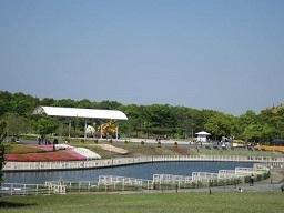 3・浜名湖公園3.JPG