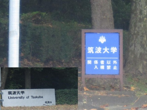3・筑波大学標1.JPG
