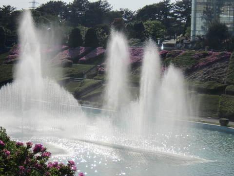 4・噴水11.JPG