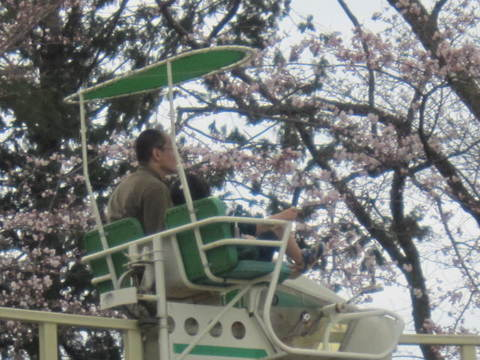 4・嵐山遊園地3.JPG