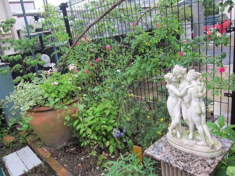KT花園・9.JPG
