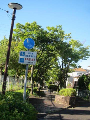 やすらぎ歩道.JPG