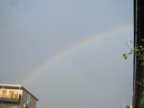 朝の虹.JPG